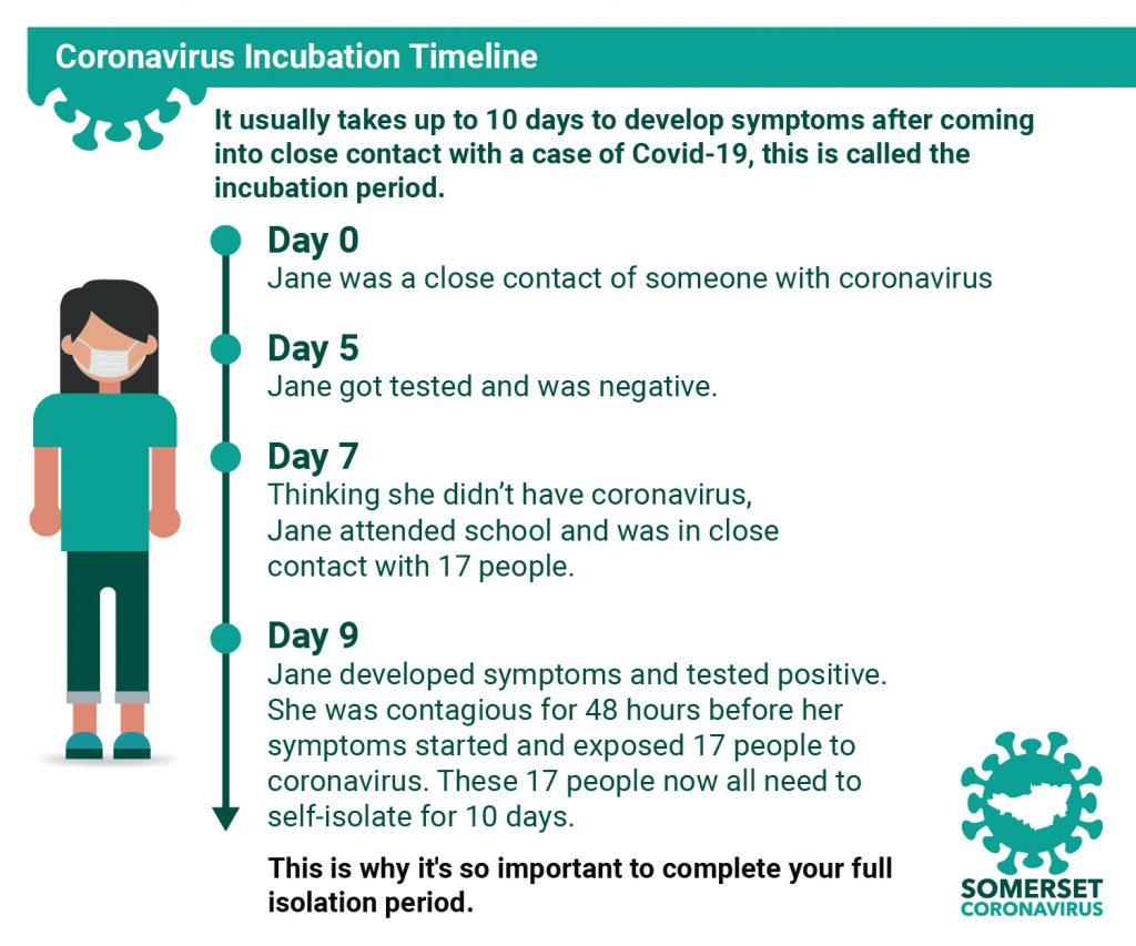 Coronavirus incubation timeline